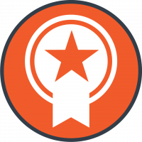 ShoeLace Icon-Premium